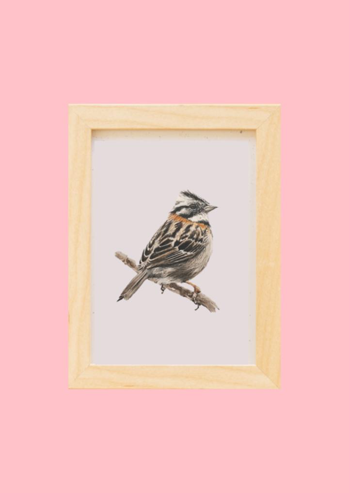 Cuadro original de aves (agenda de noviembre)