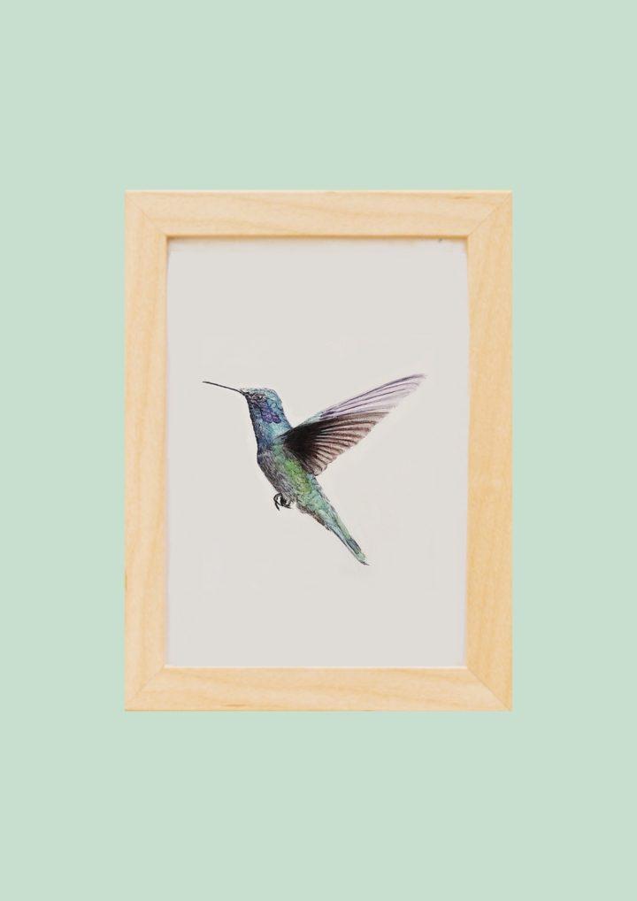 Cuadro original de colibríes (agenda de noviembre)